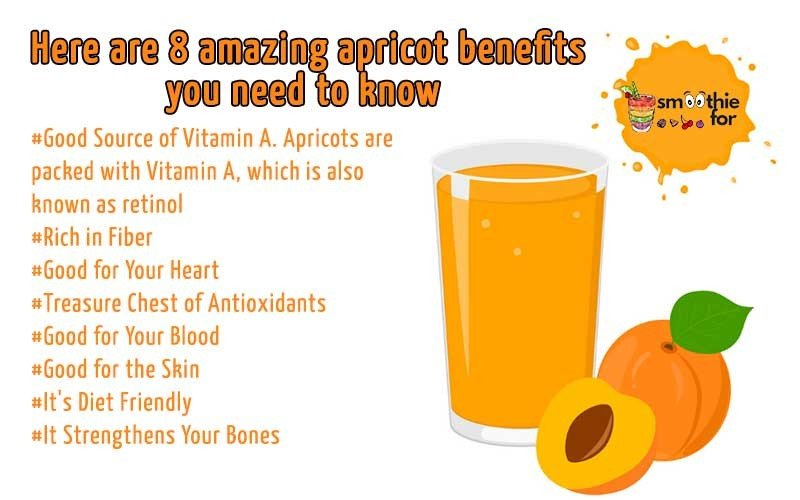 8-amazing-apricot-benefits-you-need-to-know